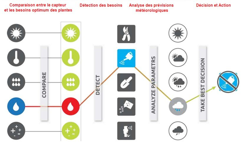 Exemple d'analyse Fliwer
