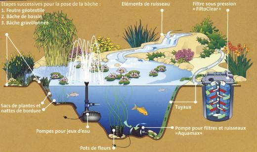 Accueil BioNova, le spécialiste de la piscine naturelle et biologique,